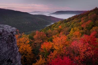 Technique : de belles photos de l'automne