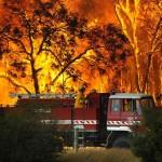 Images : feux de forêt en Australie