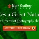 Photographe : observer la beauté de la nature