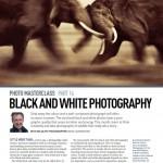 Formation : cours de photo animalière gratuits