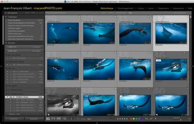 cataloguage-Lightroom-gratuit
