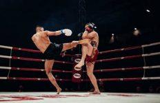 photo-combat-boxe