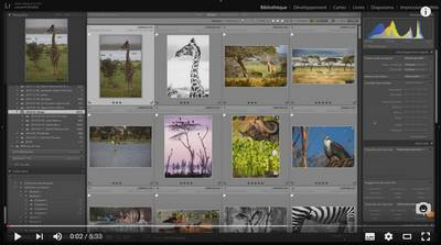 fusionner-catalogues-Lightroom
