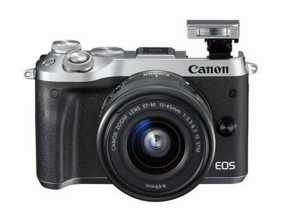 Canon EOS M6, 77D et 800D