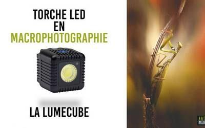 torche LED en macrophotographie