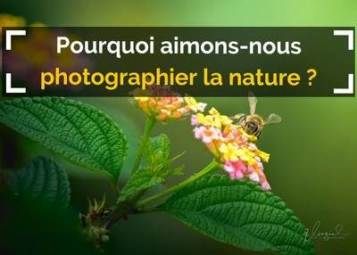 pourquoi photographier la nature