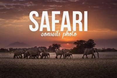 conseils photo pour un safari